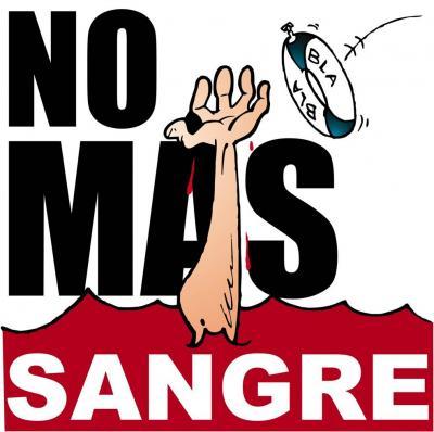 Desde Xalapa: No más Sangre